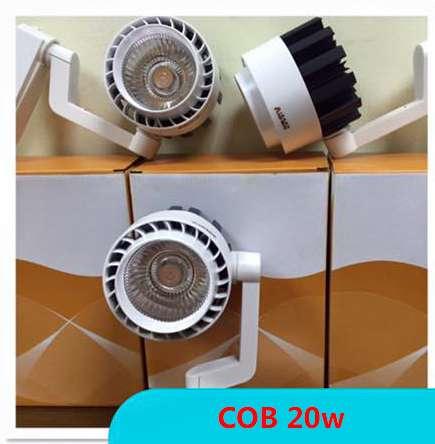 roi-ray-COB-20w1