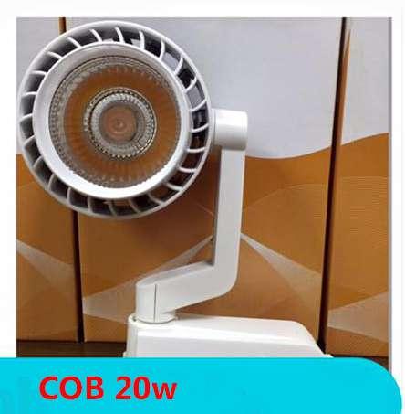 roi-ray-COB-20w2