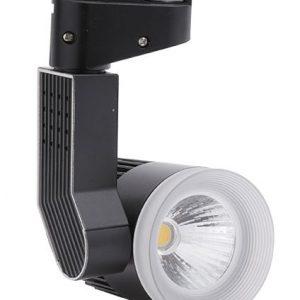 đèn-rọi-ray-COB-30w